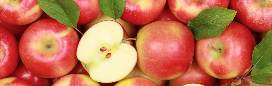 apples-cropped.jpg