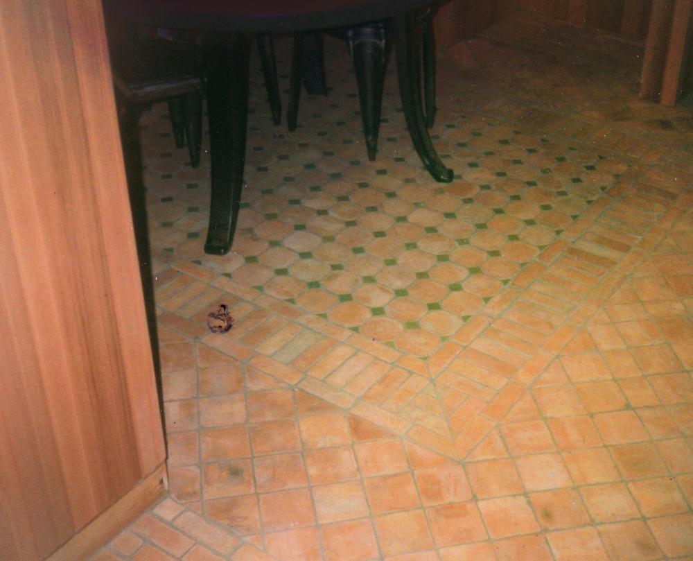 wine-cellar1.jpg