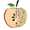 TranslateTheBrain_logo_notext.png
