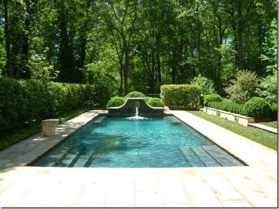 elegant pool in the woods