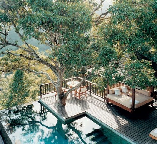 treehouse pool