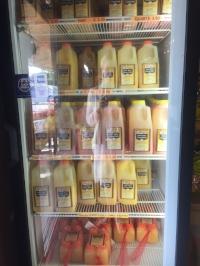 hollieanna-citrus-juice