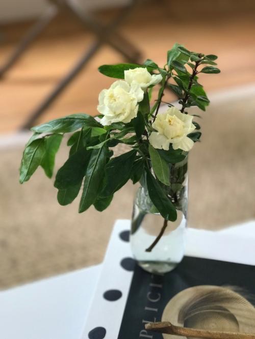flowers-neely