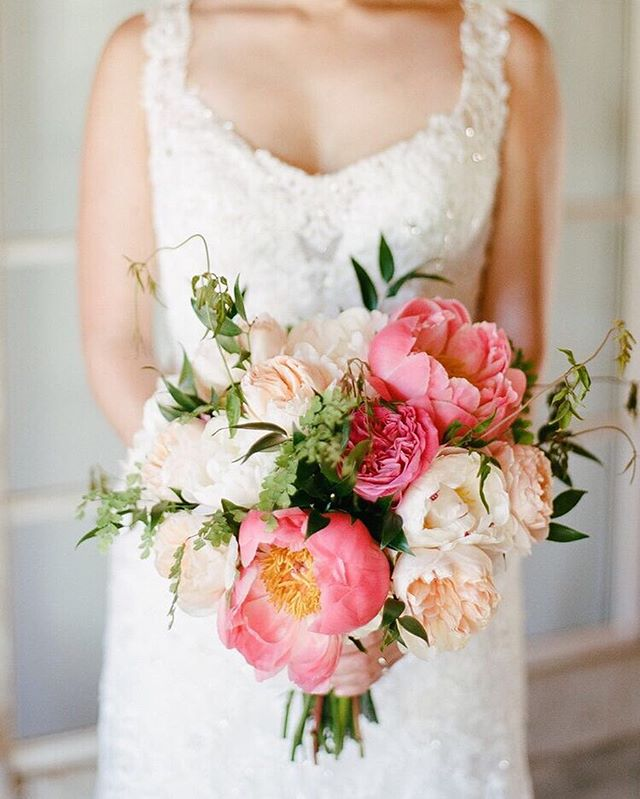 Big, bold, and beautiful, this colorful peony filled bouquet has it all. | Photography: @rebeccayale | Planning: @callistaandco | #WisteriaLaneFlowers . . . . . #florist #weddingflorist #losangelesflorist #wedding #flowers #flowerstagram #weddinginspo #weddingdesign #designinspo #arrangement #blooms #weddingflowers #socalbride #socalflorist #losangelesflorist #theknot #theknotweddings #bridalbouquet #peonies #summerflowers #bridalstyle #bigblooms #brightblooms #californiawedding #malibuwedding