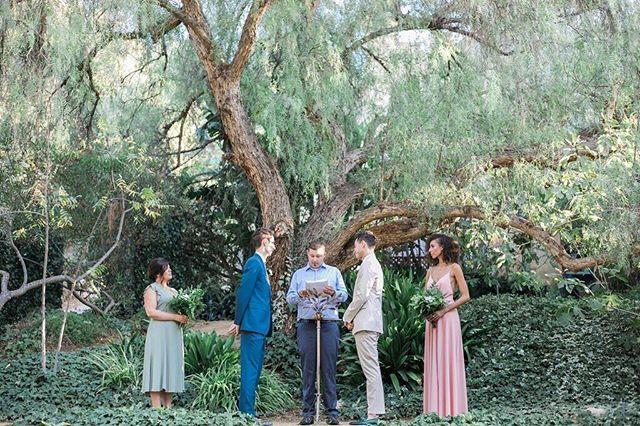 Raise your hand🙋🏼 if you love a natural ceremony backdrop as much as we do! | Photography: @jillianrosephoto | #WisteriaLaneFlowers . . . . .  #florist #weddingflorist #losangelesflorist #wedding #flowers #flowerstagram #weddinginspo #weddingdesign #designinspo #arrangement #blooms #weddingflowers #socalbride #socalflorist #losangelesflorist #theknot #theknotweddings #backyardwedding #ceremonystyle #groomstyle #grooms #rusticceremony #greenery #outdoorwedding