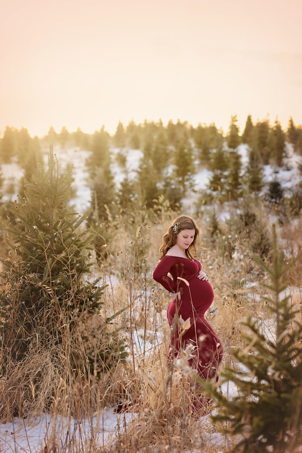 MN_Maternity_Photographer1 (1).jpg