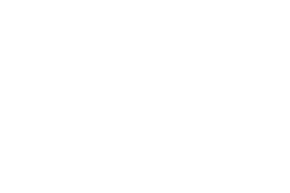 OFFICIAL SELECTION  - ACCOLADE GLOBAL FILM COMPETITION  - 2016.png