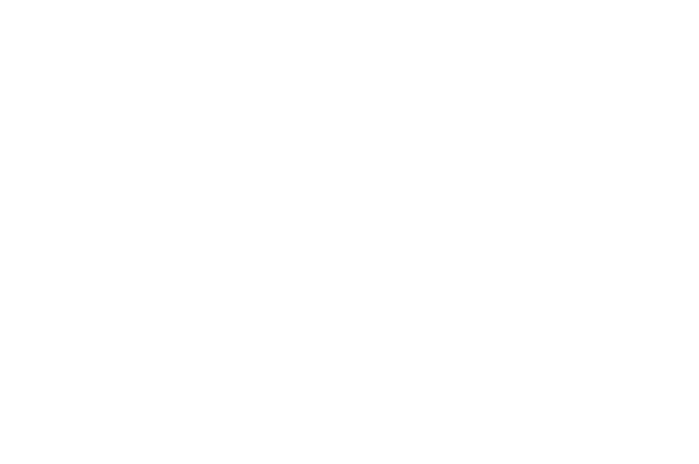 OFFICIAL SELECTION  - BEST SHORTS FILM COMPETITION  - 2016.png