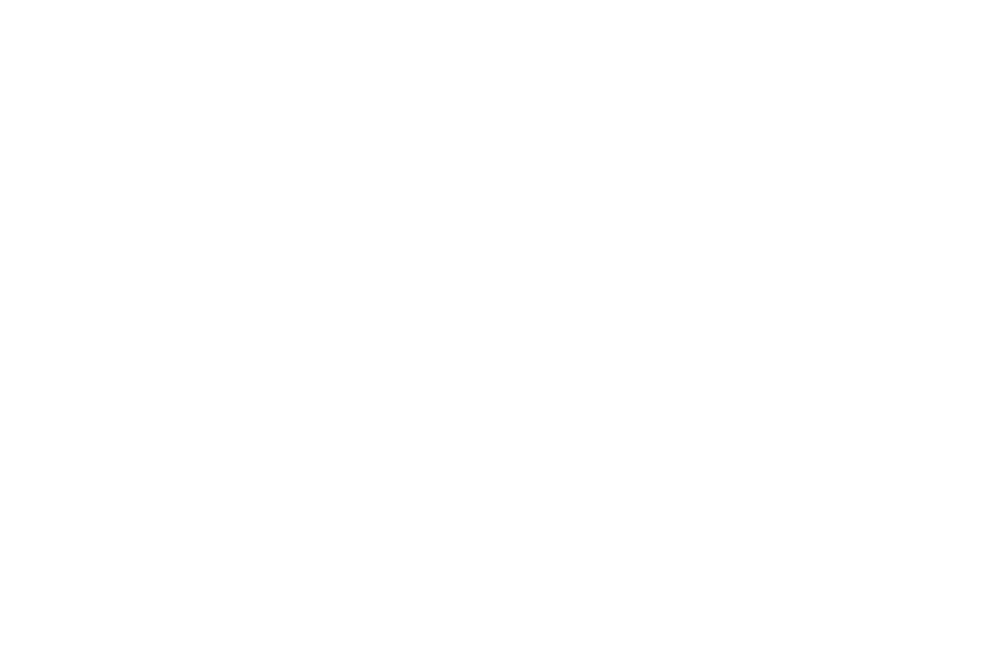OFFICIAL SELECTION  - DMOFF - 2016.png