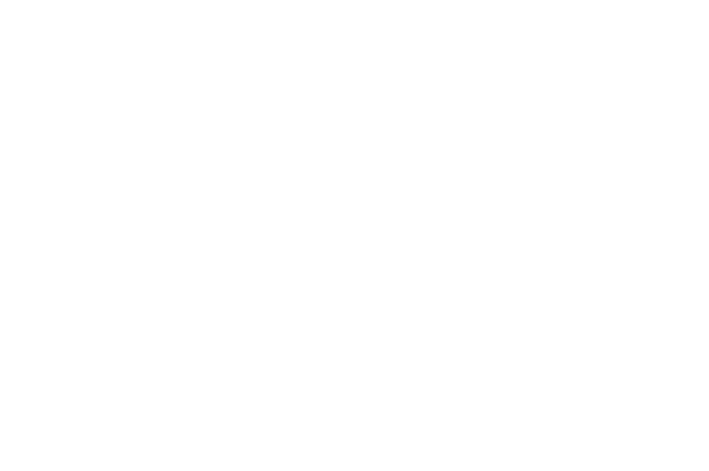 OFFICIAL SELECTION  - OIFF - 2016 (1).png