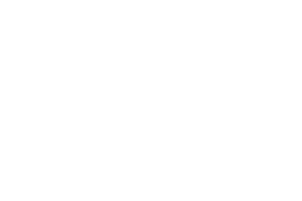 OFFICIAL SELECTION  - ROMA CINEDOC  - 2016.png