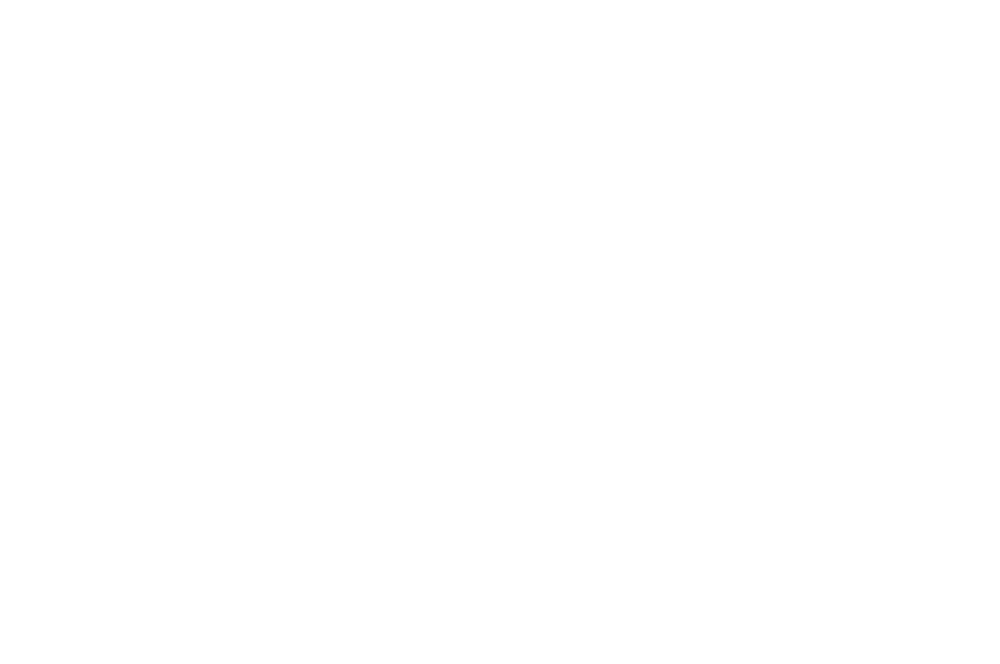 OFFICIAL SELECTION - BUCHAREST SHORTCUT CINEFEST  - 2016.png