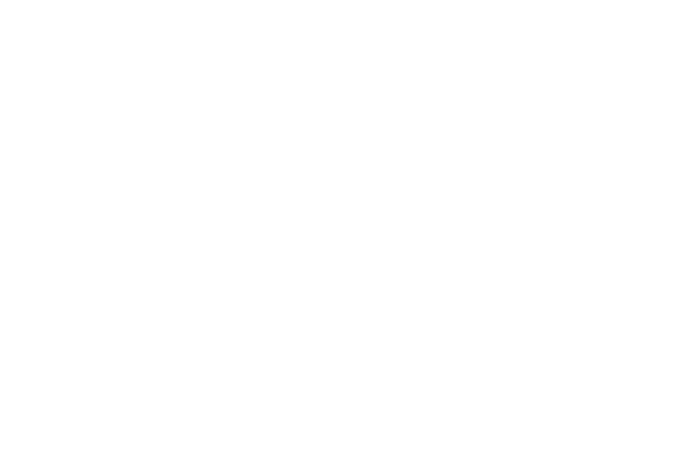 OFFICIAL SELECTION - CHAIN NYC FILM FESTIVAL  - 2016.png