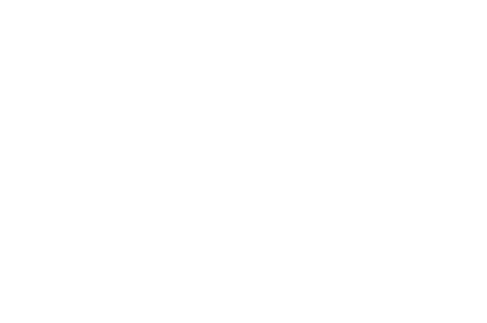 OFFICIAL SELECTION - HIMPFF  - 2016.png