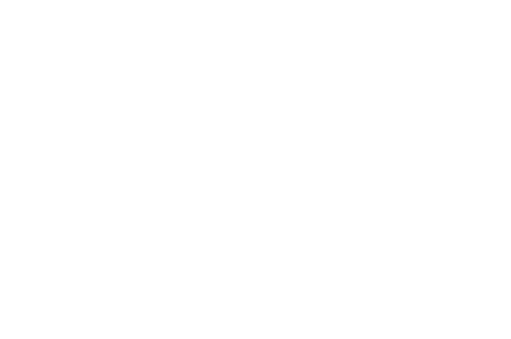 OFFICIAL SELECTION - LAIFF AWARDS  - 2016.png