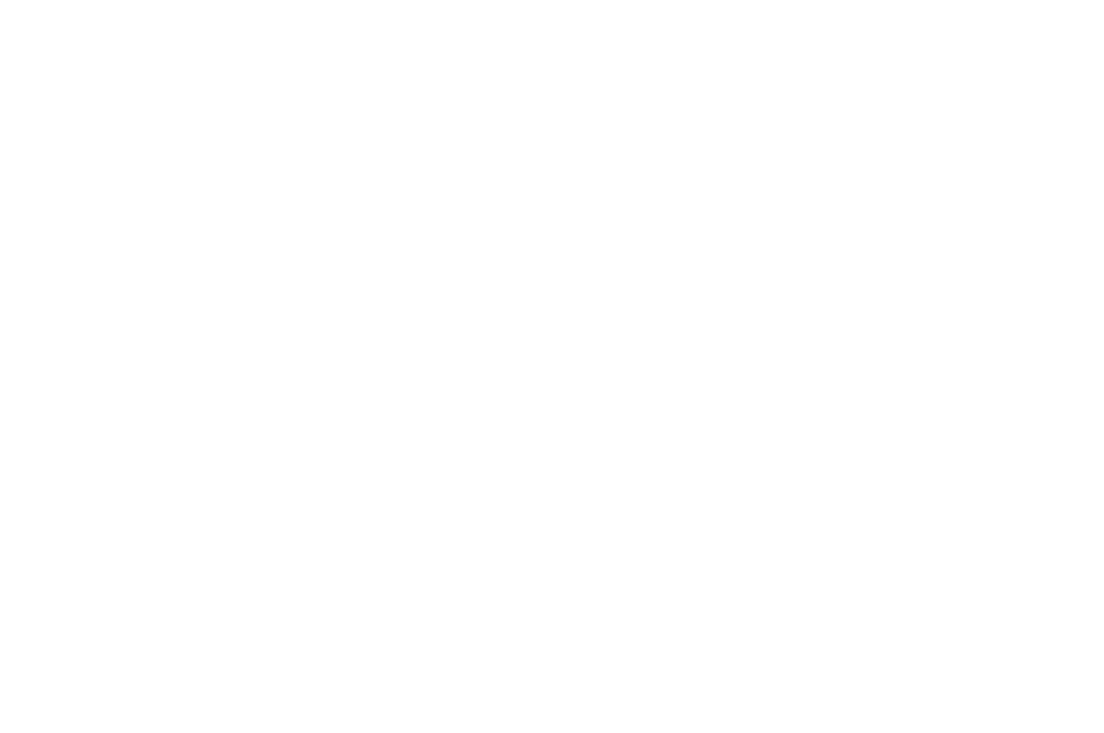 OFFICIAL SELECTION - LOS ANGELES CINEFEST - 2016.png