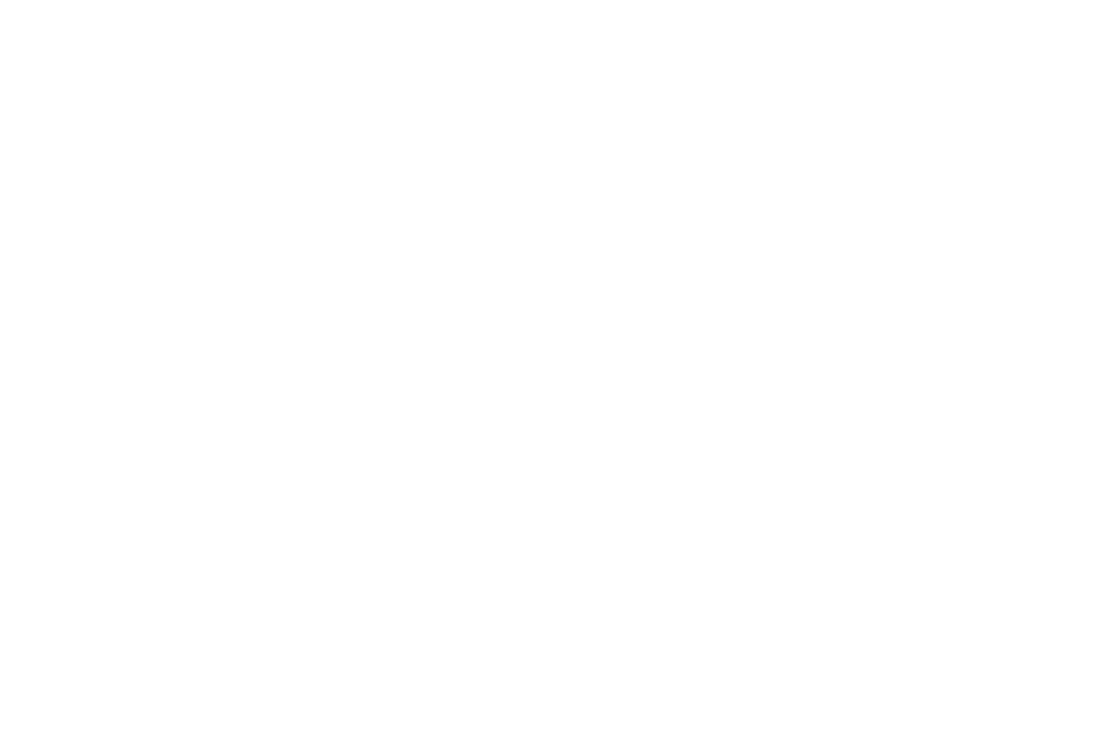 OFFICIAL SELECTION - NEW FILMMAKERS NEW YORK  - 2016.png