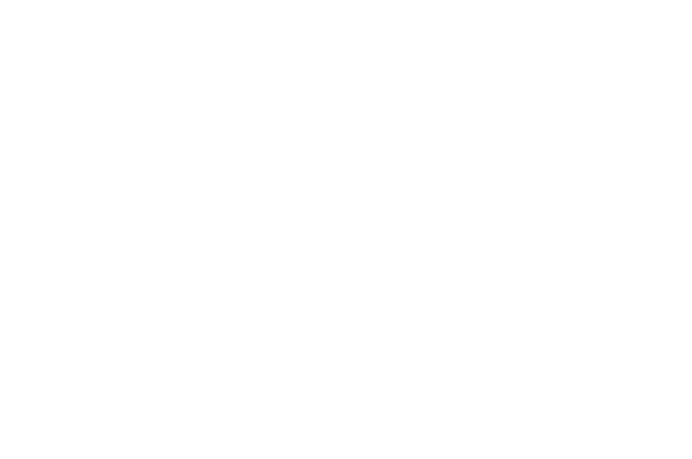 OFFICIAL SELECTION - NYCIFF  - 2016.png