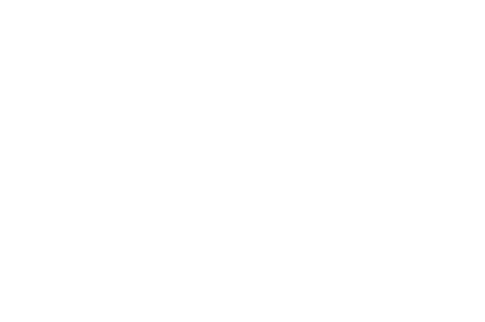 WINNER  - AWARD OF RECOGNITION  - HIMPFF 2016.png