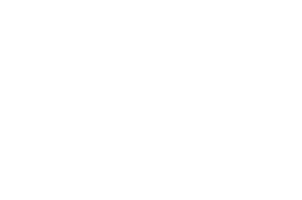 SEMI-FINALIST - NEW YORK STATE INTERNATIONAL FILM FESTIVAL  - 2016 (1).png