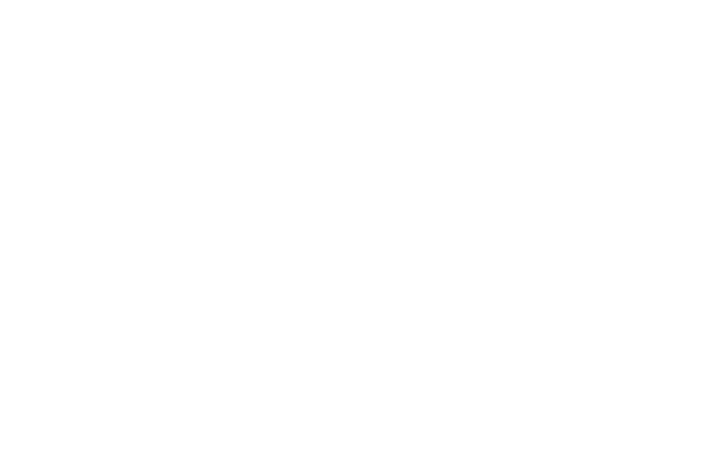 WINNER  - FIRST TIME FILMMAKER  - LAIFFA 2016 (1).png
