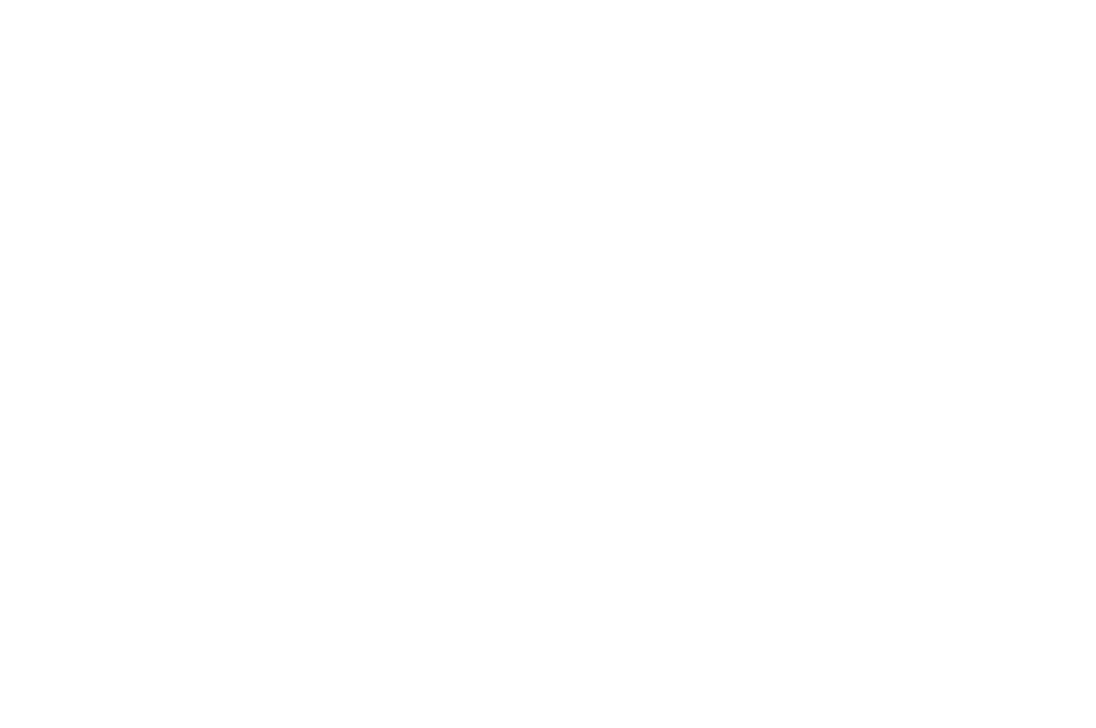 WINNER  - BEST INTERNATIONAL SHORT FILM  - ROMA CINEDOC 2016 (1).png