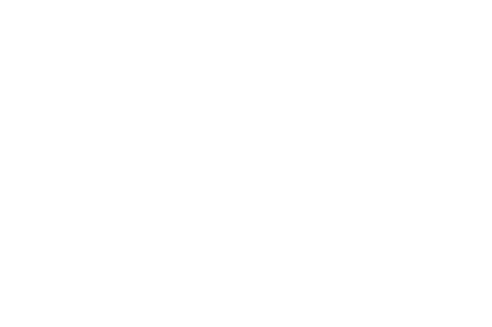 WINNER  - BEST DIRECTOR - OUCHY FILM AWARDS 2016.png