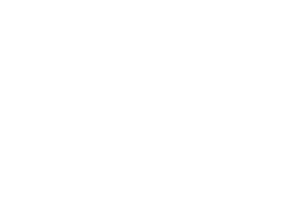 OFFICIAL SELECTION - NYC INDIE FILM AWARDS - 2016 (1).png