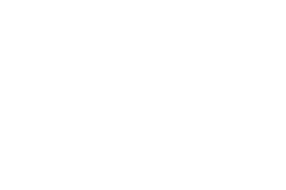 OFFICIAL SELECTION - NEU WORLD INTERNATIONAL FILM FESTIVAL  - 2016 (1).png
