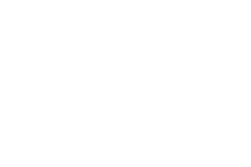 OFFICIAL SELECTION - TMFF - 2016 (1).png