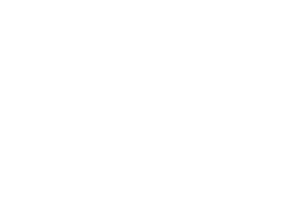 WINNER  - BEST DIRECTOR PLATINUM AWARD  - NYC INDIE FILM AWARDS 2016 (1).png
