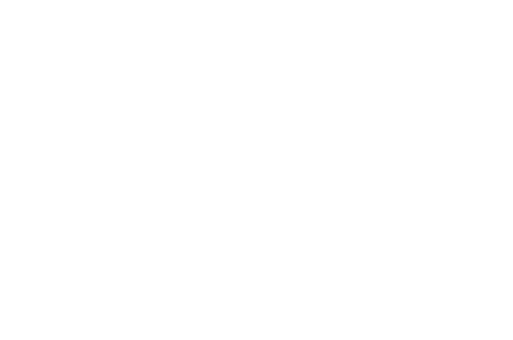 OFFICIAL SELECTION - AUCKLAND INTERNATIONAL FILM FESTIVAL  - 2016 (2).png