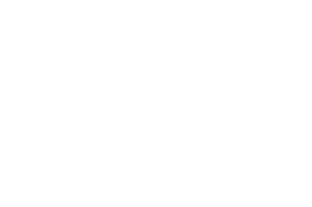 OFFICIAL SELECTION - GROVE FILM FESTIVAL  - 2016 (1).png
