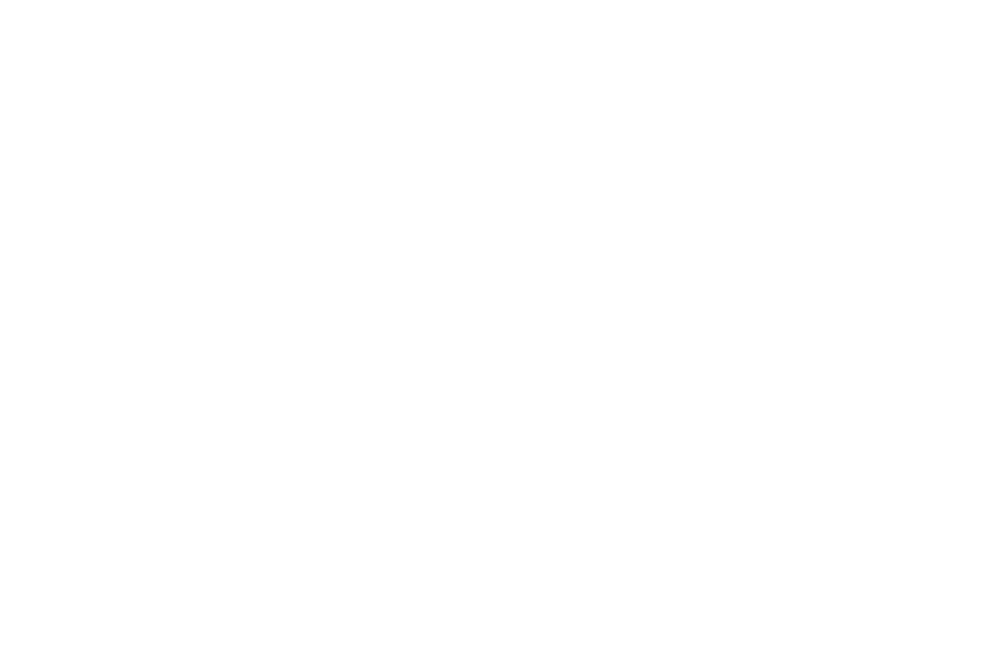 OFFICIAL SELECTION - HOLLYWOOD FILM COMPETITION  - 2016 (2).png