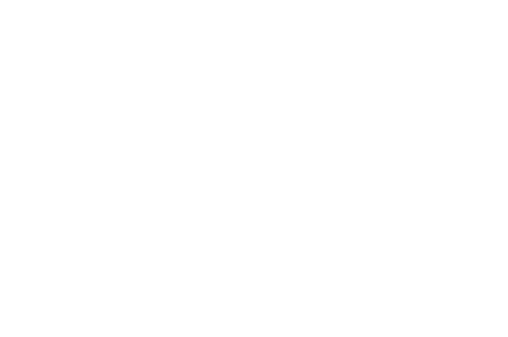OFFICIAL SELECTION - LARGO FILM AWARDS  - 2016.png