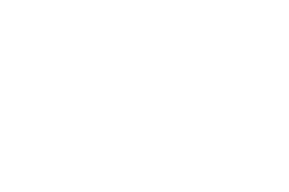 WINNER - BEST ACTRESS - AUCKLAND INTERNATIONAL FILM FESTIVAL 2016 (1).png