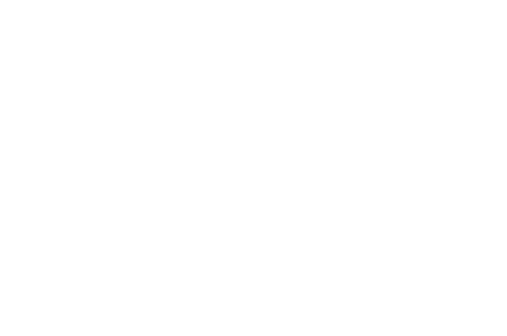 OFFICIAL SELECTION - IMFF - 2016 (1).png