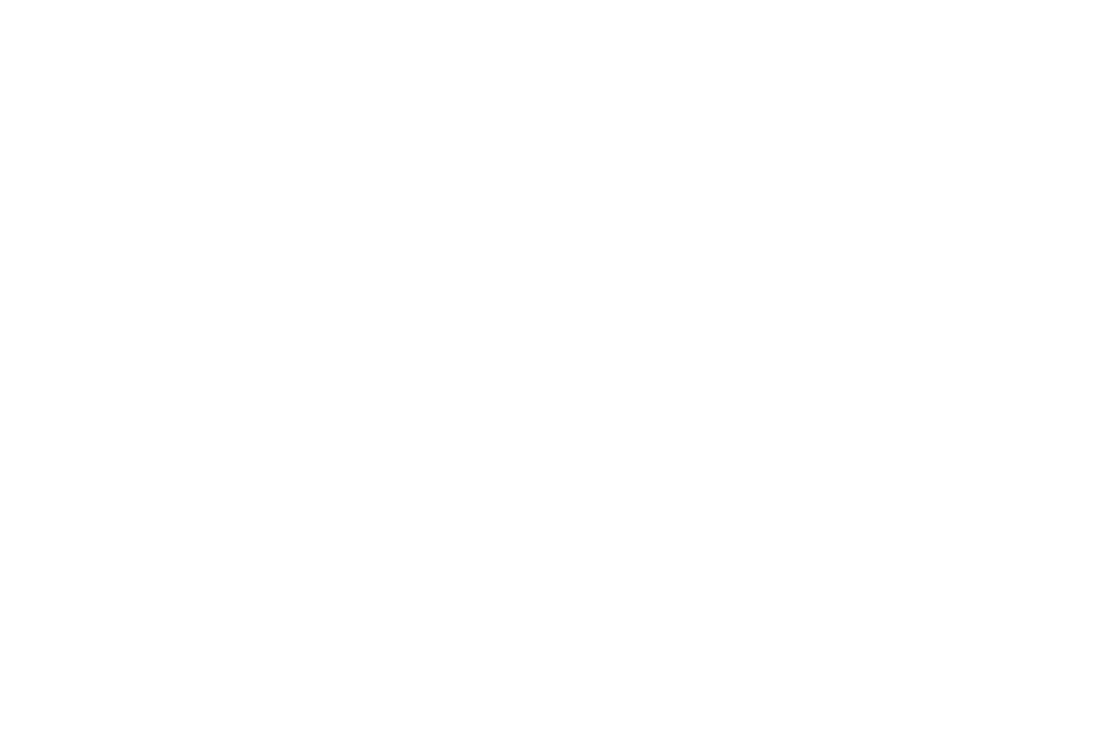 OFFICIAL SELECTION - THE MONKEY BREAD TREE FILM AWARDS  - 2016 (1).png