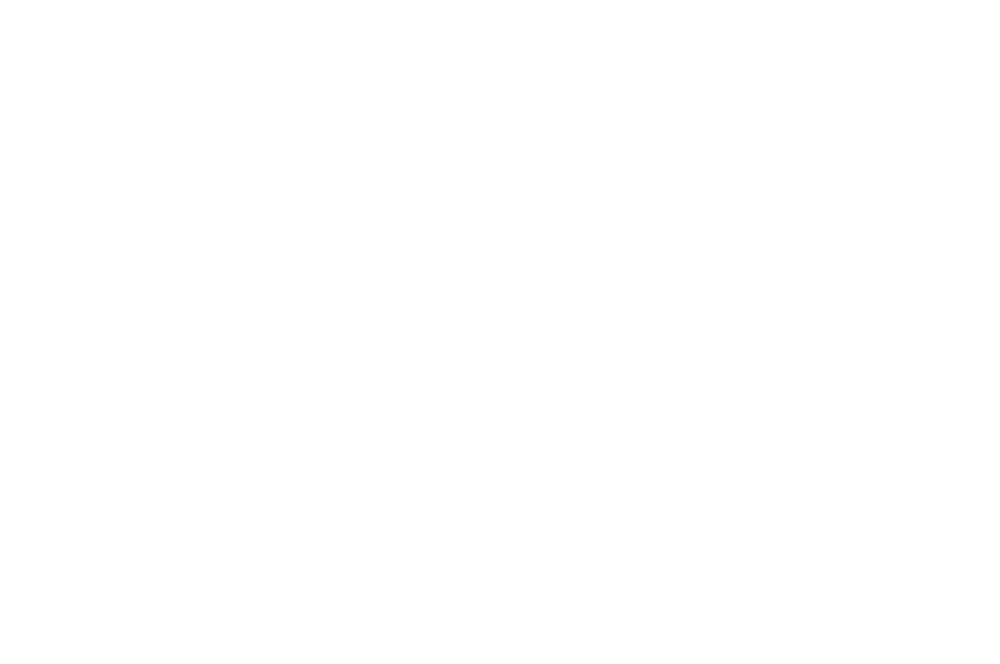 OFFICIAL SELECTION - TOP SHORTS  - 2016 (1).png