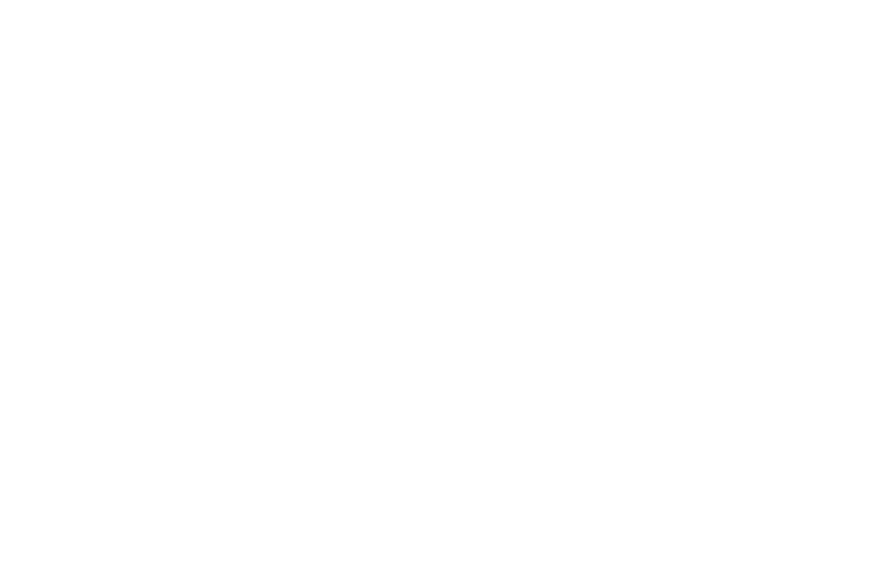 OFFICIAL SELECTION - WOODENGATE IFF - 2016.png