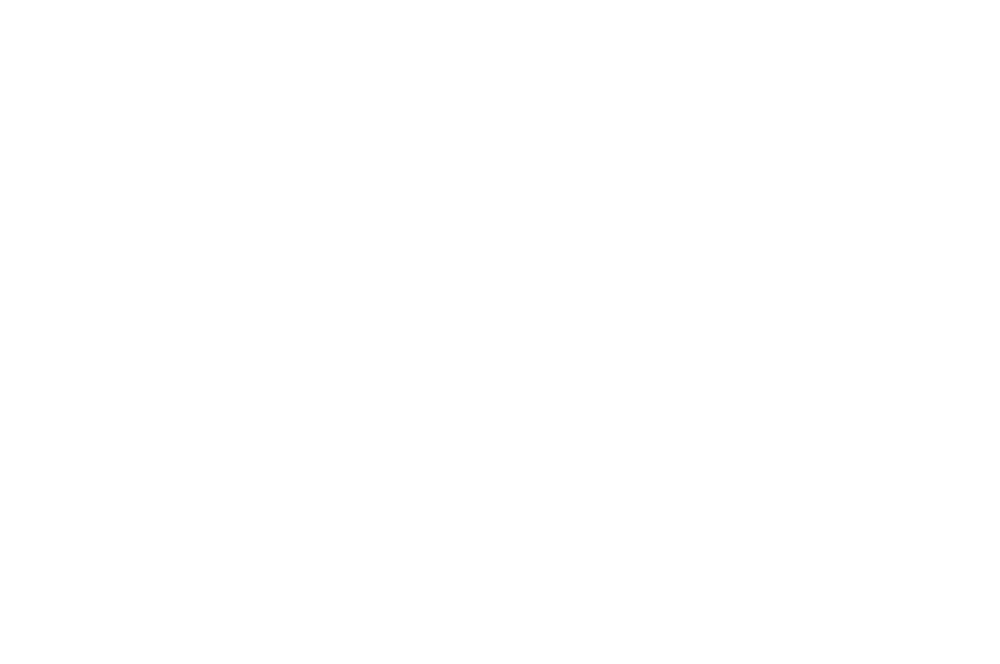 MERIT AWARD  - INTERNATIONAL NEW YORK FILM FESTIVAL  - 2016.png