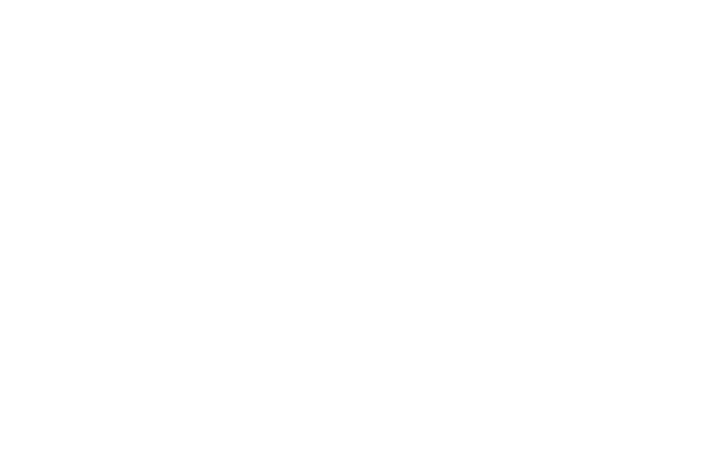 OFFICIAL SELECTION - FESTIGIOUS INTERNATIONAL FILM FESTIVAL  - 2016 (1).png