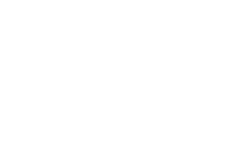 OFFICIAL SELECTION - INYFF - 2016.png