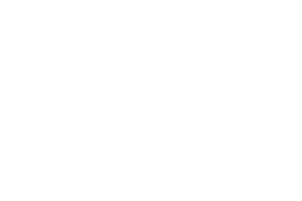 AWARD OF MERIT  - INYFF - 2016 (1).png