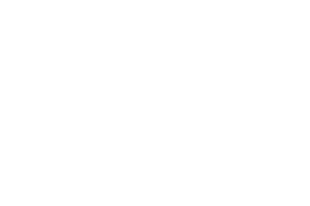 SPECIAL MENTION  - GLOBAL SHORTS  - 2016.png