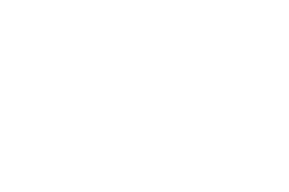WINNER - AWARD OF EXCELLENCE - CANADA SHORTS 2016.png