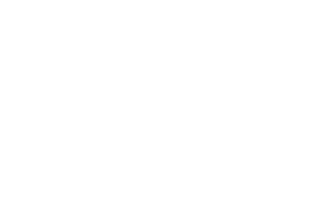 OFFICIAL SELECTION - CANADA SHORTS  - 2016 (1).png