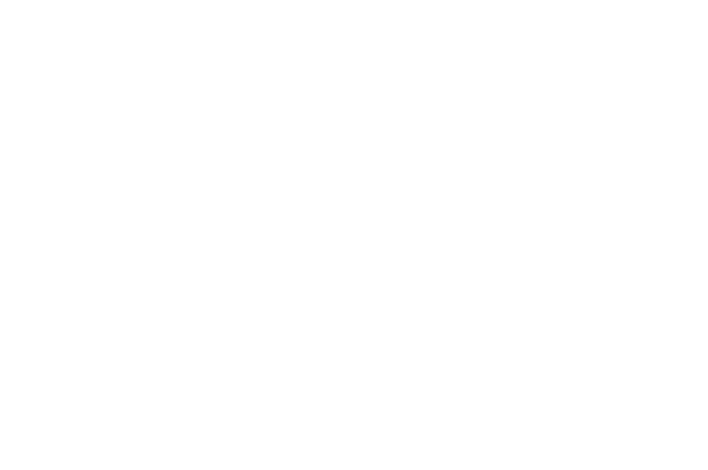 OFFICIAL SELECTION - PARIS PLAY FILM FESTIVAL  - 2016.png