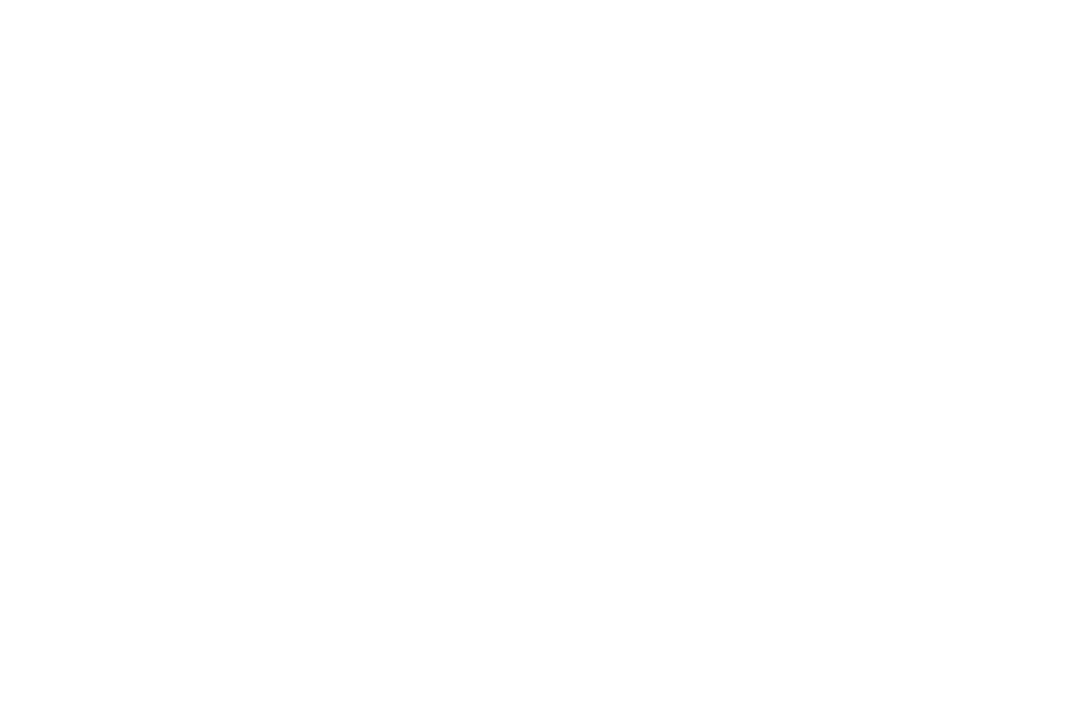 WINNER - BEST DIRECTOR 2016 - OUCHY FILM AWARDS 2016.png