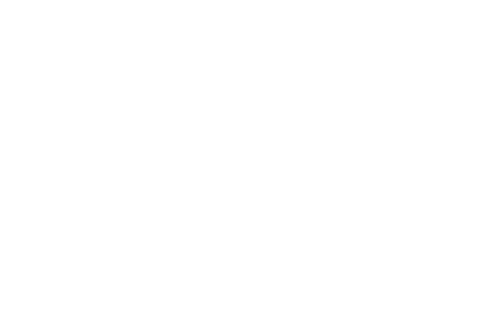 OFFICIAL SELECTION - ATLAS AWARDS INTERNATIONAL FILM FESTIVAL  - 2017 (1).png